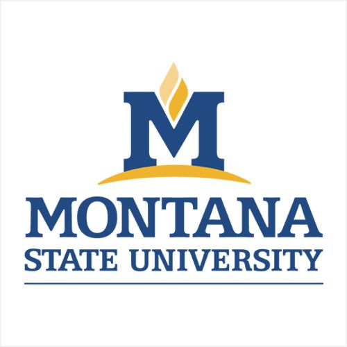 BZN Sponsor - Montana State University