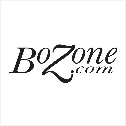 BZN Sponsor - The BoZone