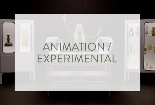 Animation / Experimental